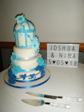 4t-josh-wed-cake-in-place1